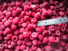 Individual quick freezing raspberry