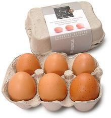 FRESH TABLE CHICKEN EGGS FOR LOW PRICE