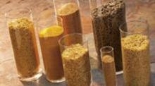 Distillers Dried Grains with Solubles (DDGS)