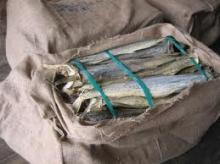 Norway Stockfish