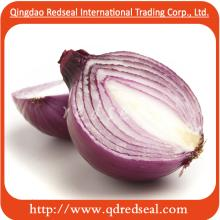 big size Fresh Red Onion