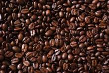 Cocoa and Coffee Beans