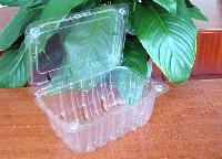 Plastic Fruit Clamshell/Fruit Container