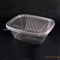 Disposable Plastic Food Container(Fruit and salad box)