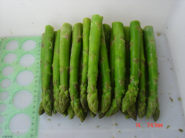 ... asparagus products,China New season frozen white asparagus supplier
