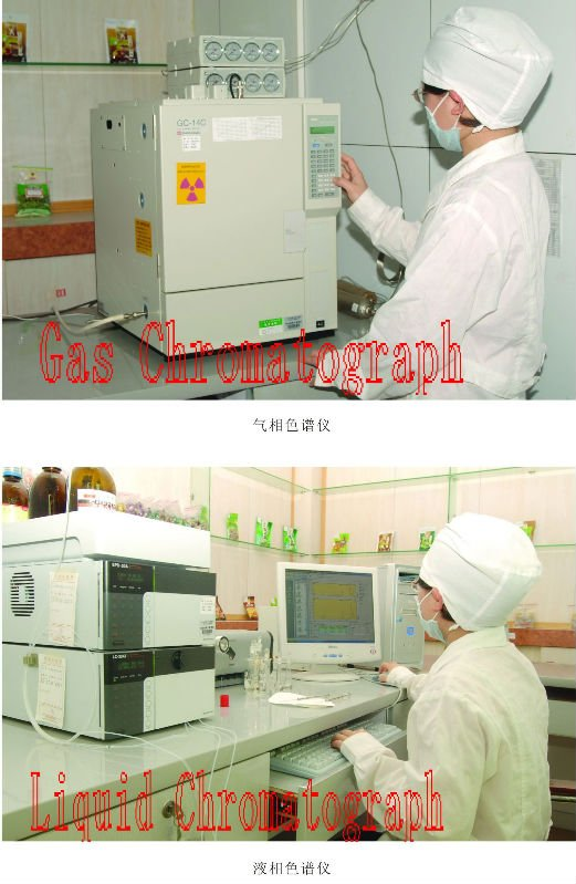 Liquid Chromatograph and Gas Chromatograph.jpg