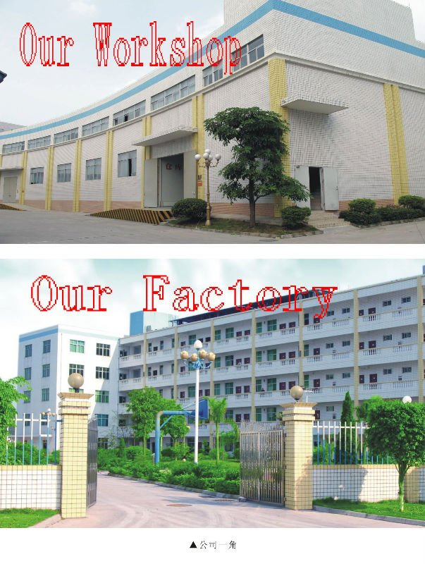 Our Factory and workshop.jpg