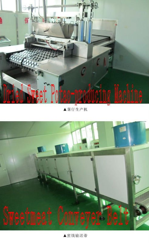 Dried Sweet Potato Production Machine and Sweetmeat Conveyer Belt.jpg