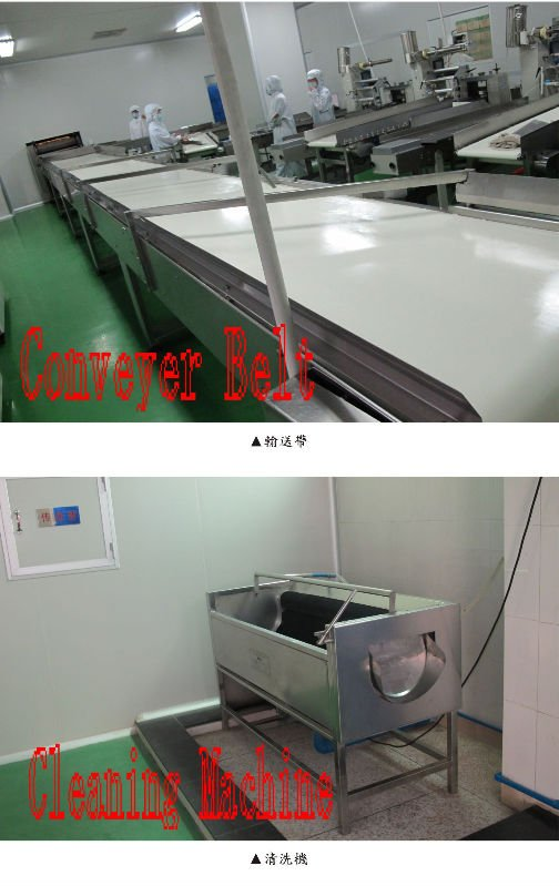 Conveyer Belt and Cleaning Machine.jpg