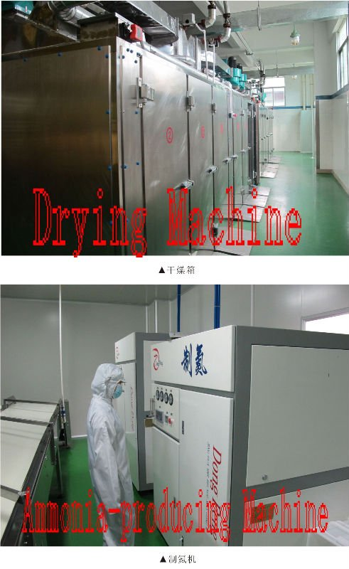 Drying Machine and Ammonia Producing Machine.jpg