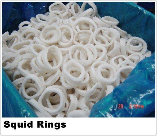 squid ring
