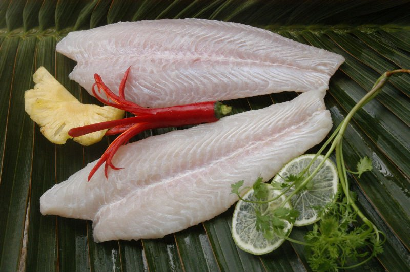 Swai fish vs catfish frozen pangasius fillet basa fish for Swai fish wikipedia