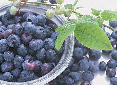blueberry-1