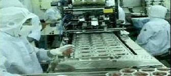 production process of radish