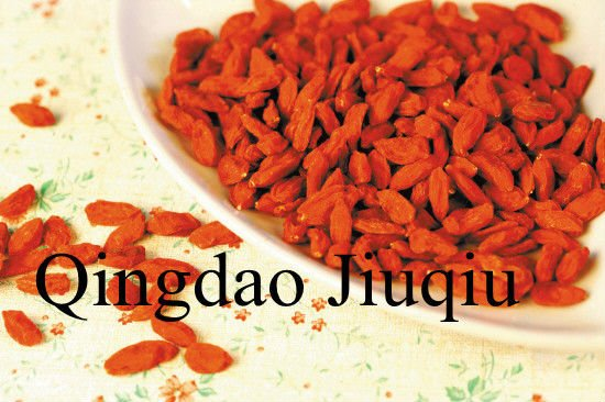dried chinese  lycium   fruit s