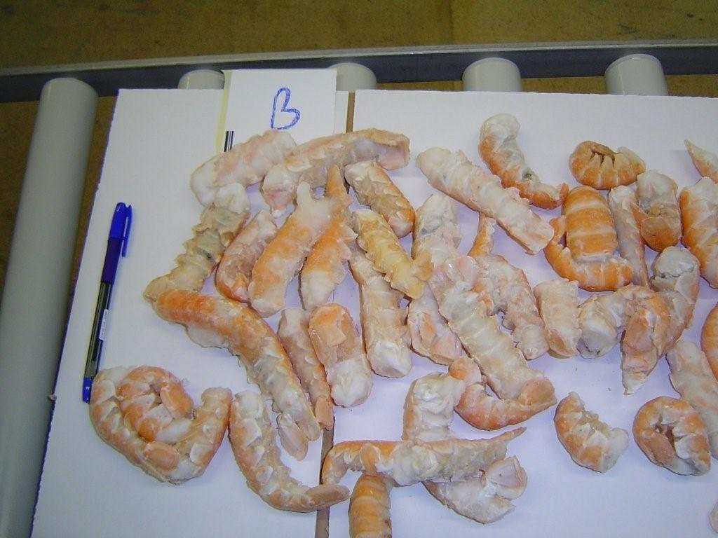 Lobster tails (Nephrops norvegicus)
