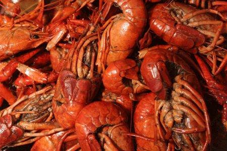 Crayfish Or Crawfish products,Russia Crayfish Or Crawfish ...