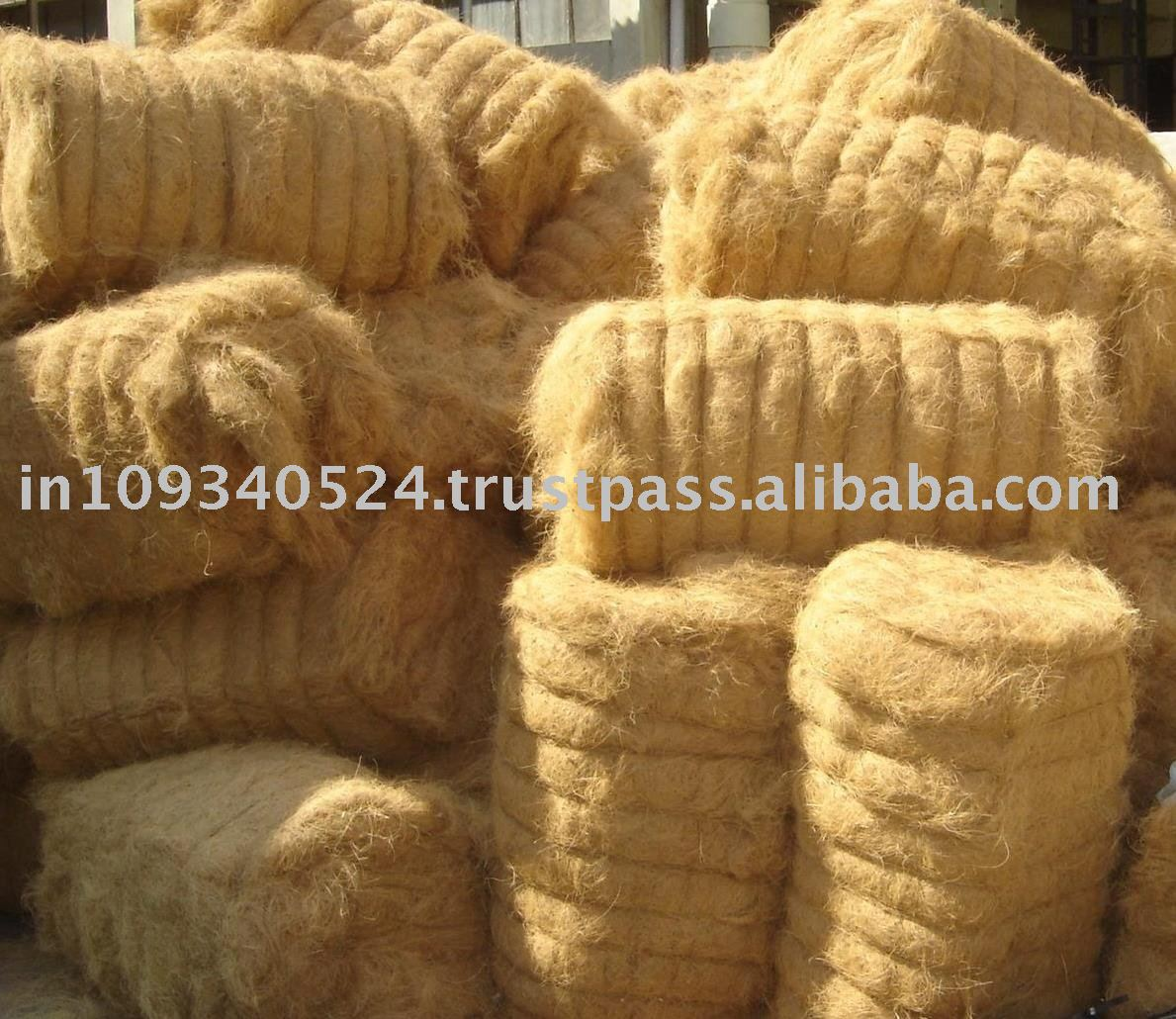 Golden brown Colour Coconut Fibre