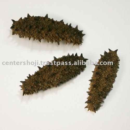DRIED SEA CUCUMBER( made in  JAPAN)