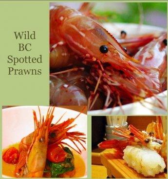 Wild BC Spotted Prawns