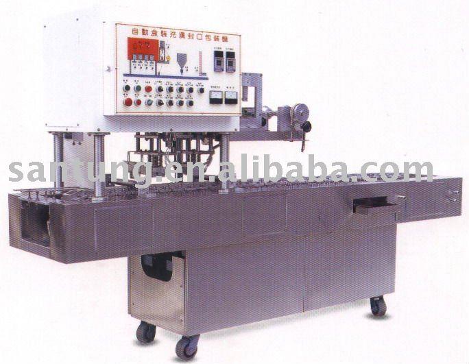 Automatic Box Filling & Sealing Machine