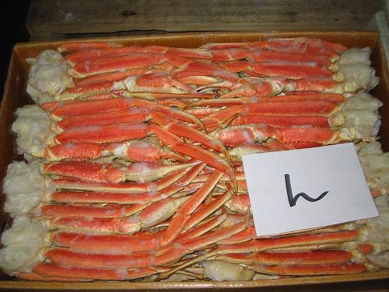 Boiled snow crab section