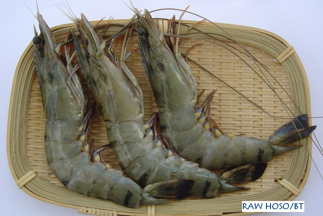 Black Tiger Shrimp products,Vietnam Black Tiger Shrimp ...