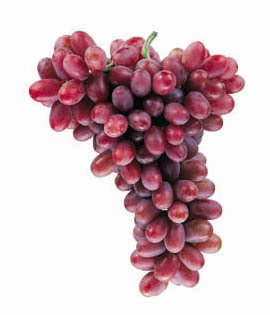 Crimson Seedless Fruit