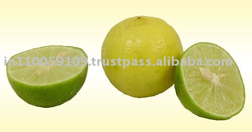 indian fresh lemon
