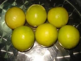 Lemon sutil - Limon Sutil