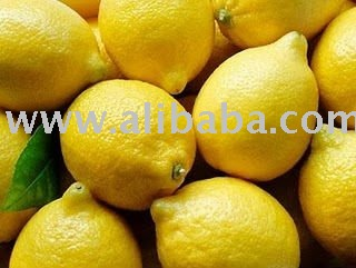 FRESH INDIAN LEMON