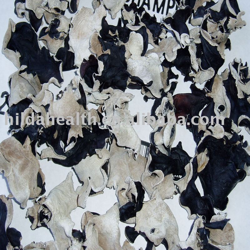 White-back black fungus whole