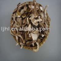 funghi porcini dried
