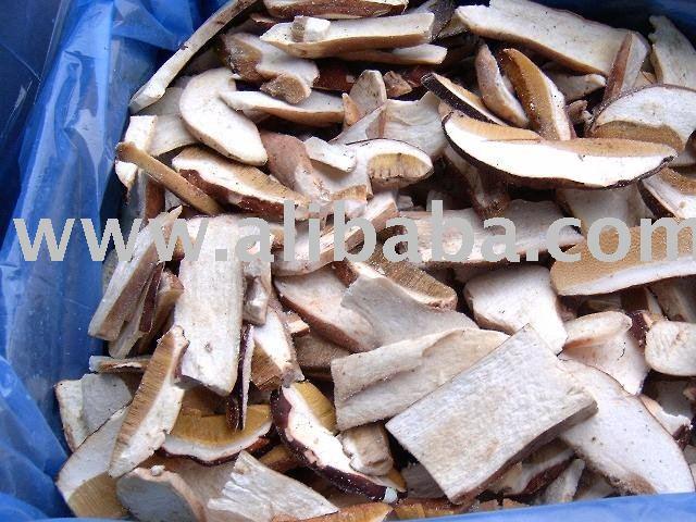dried mushrooms boletus edulis