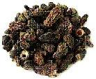 Dried  Mushroom s ( Morel s)