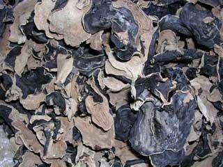 Black Fungus, Wood Ear Mushroom