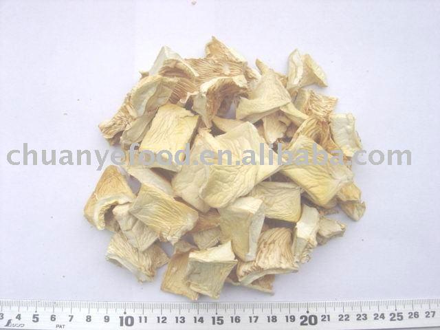 dried  oyster   mushroom ( pleurotus  ostreatus)