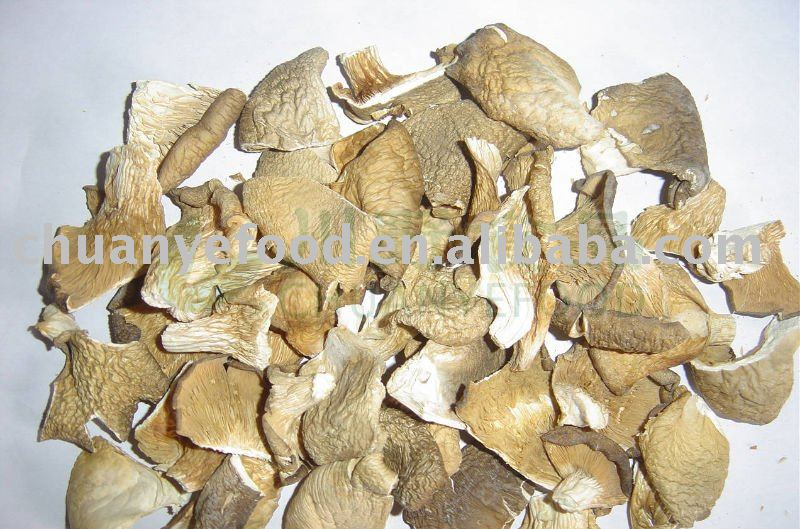 Grey Dried pleurotus ostreatus/Dehydrated oyster mushroom