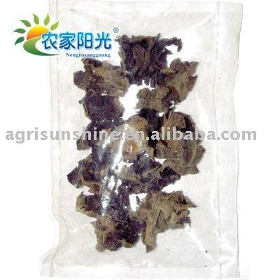 wihte back black fungus