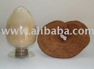 Reishi mushroom Powder