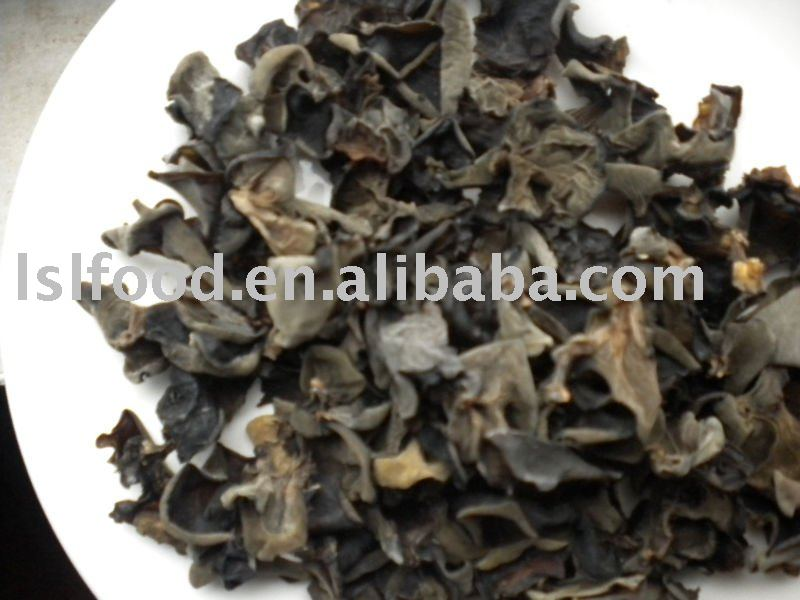 dried selected log black fungus