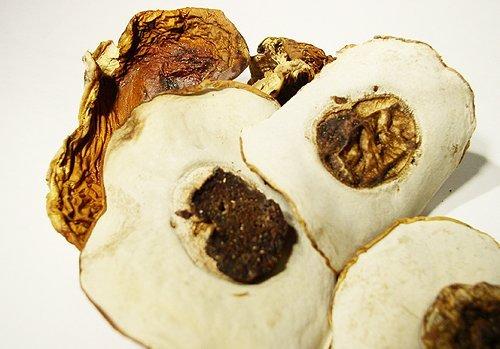 Mushrooms, Porcini, King Bolete
