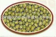 Mung Bean (Green Mung Bean)