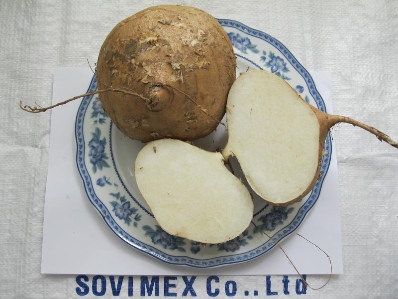 yam bean