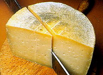 Spain Lamancha Cheese