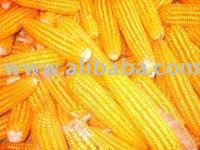 Jagung Lumban Julu (Lumban Julu Corn)