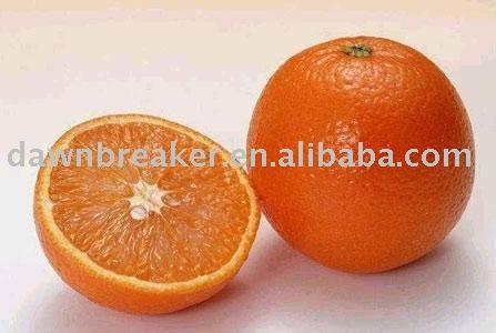 fresh sweet mandarin orange