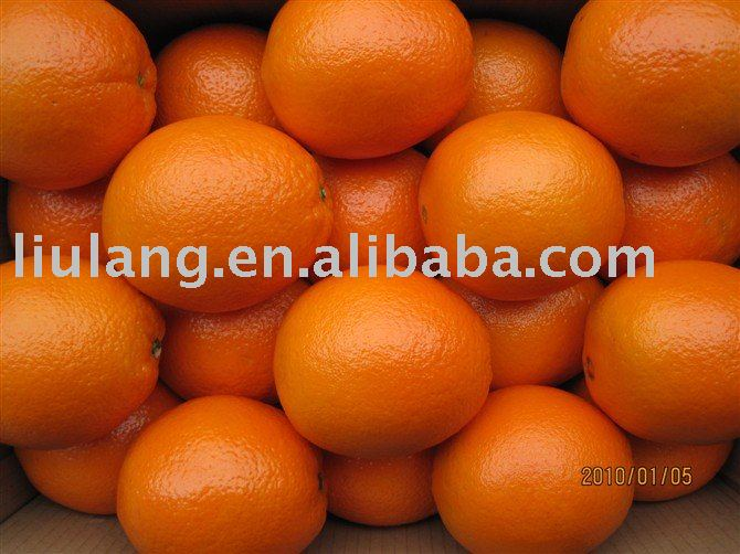 Gannan Navel Orange