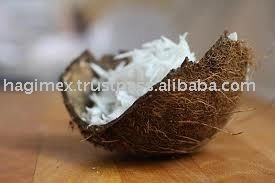 Desiccated coconut powder high fat fine grade