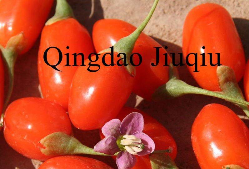 organic goji berry fruits